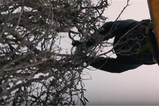 Новогодняя иллюминация по проспекту 9-ой Пятилетки