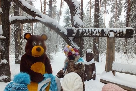 Прогулка по зимнему лесу национального парка «Чаваш вармане» - прекрасное времяпрепровождение