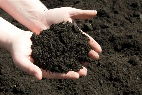 Сохранение, восстановление и повышение эффективности использования почв входят в число стратегических целей развития АПК страны