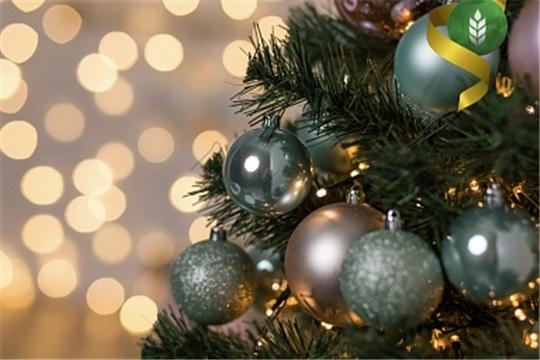 Поздравление Министра сельского хозяйства России Дмитрия Патрушева с Новым годом и Рождеством