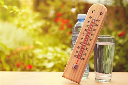 Как пережить аномальную жару