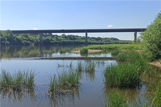 О безопасности на водоемах в летных период