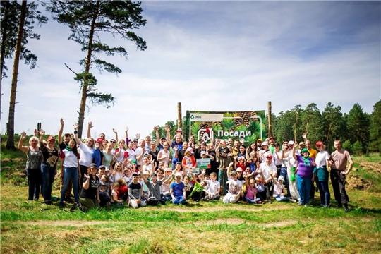 По итогам конкурса волонтерских посадок было восстановлено 13,5 гектаров леса