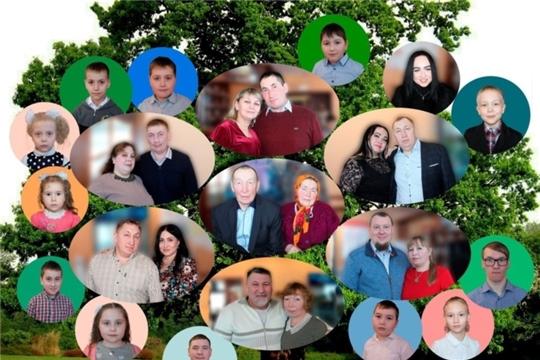 В учреждениях культуры Аликовского района прошли мероприятия посвященные Дню семьи, любви и верности