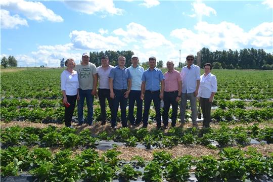Делегация Канашского района посетили фермерское хозяйство Арины Платоновой