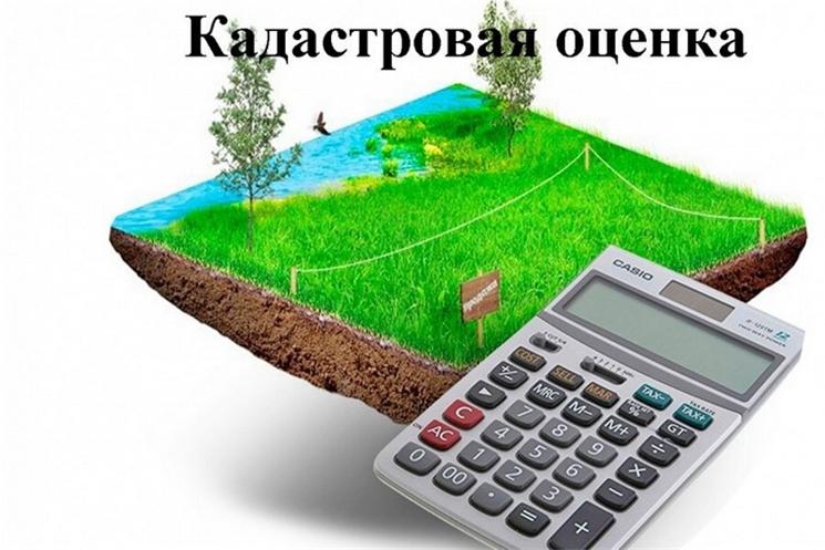 В 2022 году по всей России пройдет кадастровая оценка земельных участков