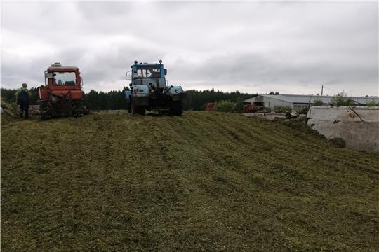Качественная заготовка кормов – залог успешного развития хозяйства.