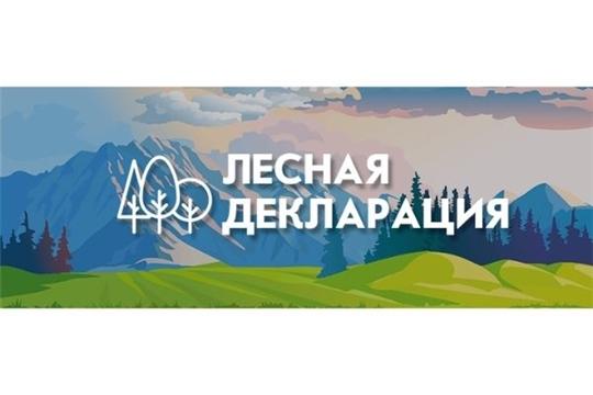 Чувашские лесопользователи теперь могут подать лесную декларацию только через портал «Госуслуги»