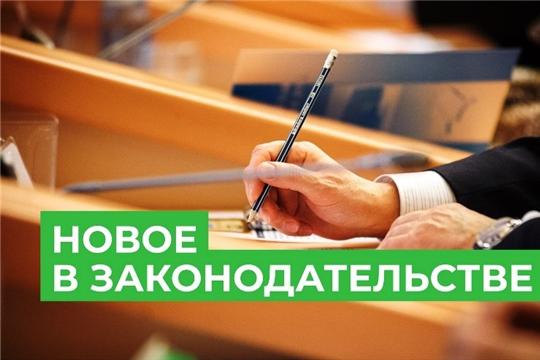 Правительство утвердило правила проведения административного обследования лесов