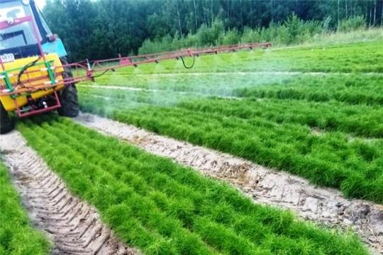 В Кирском лесничестве проведено второе профилактическое  опрыскивание посевов сосны