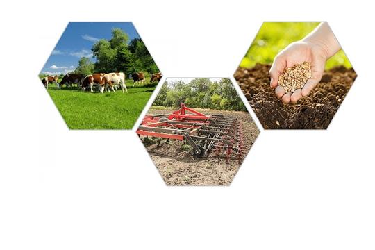 Чувашская Республика занимает 3 место в ПФО по доведению средств господдержки до аграриев