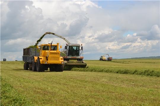 На 21 июня в хозяйствах республики скошено 43% всей укосной площади трав