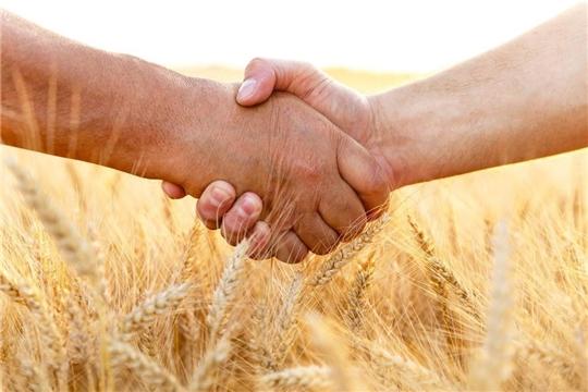 Для аграриев Чувашии введена новая форма господдержки - грант «Перспектива»