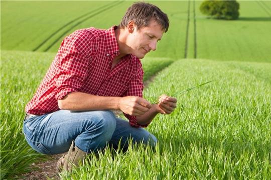 Пакетное предложение «Агроном Онлайн»  доступно сельхозпредприятиям любого масштаба по всей России