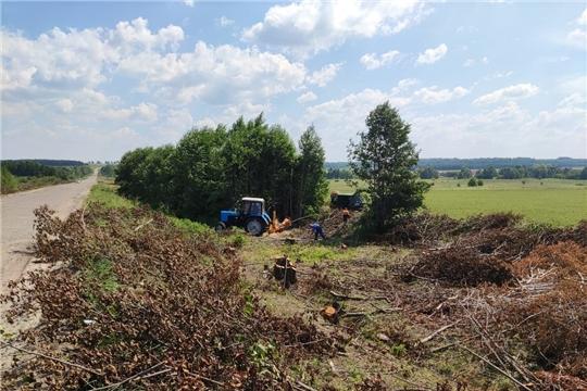 В Чувашии выполнены работы первого этапа по скосу трав и уничтожению борщевиков с придорожной полосы
