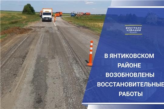 В Янтиковском районе возобновлены работы по восстановлению дорог, разрушенных при строительстве М-12