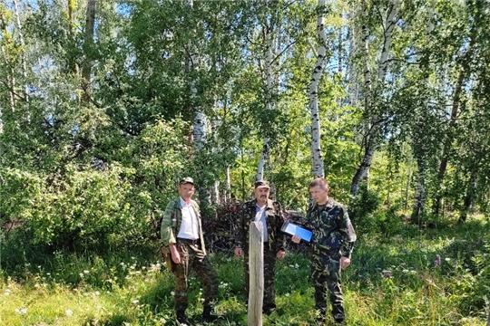Проведены мероприятия по контролю в лесах Вурнарского лесничества