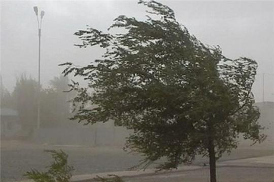 Предупреждение о неблагоприятных метеорологических явлениях