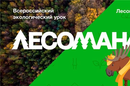 О Всероссийском экологическом уроке «Лесомания»