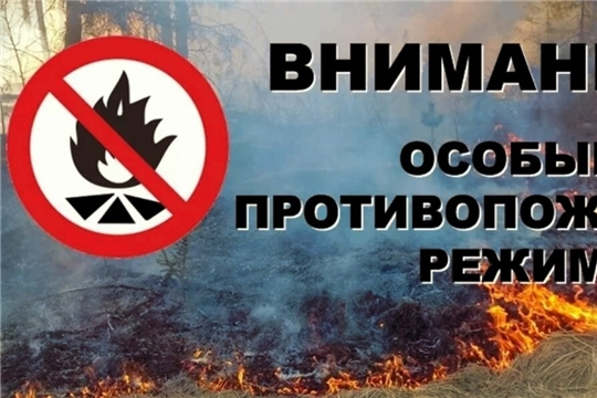 С 25 апреля 2021 года на территории республики установлен особый противопожарный режим