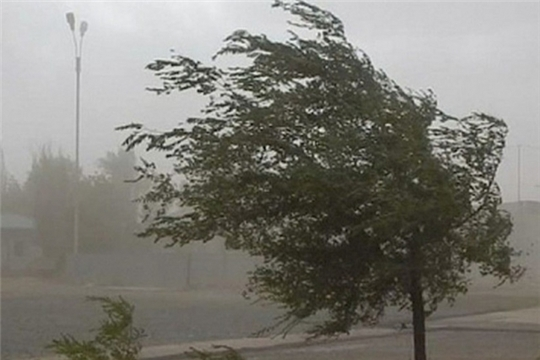 Предупреждение об опасных метеорологических явлениях