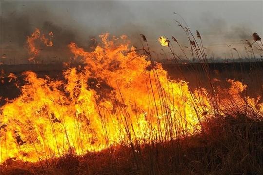 На территории Республики ожидается «ЖЕЛТЫЙ» уровень пожарной опасности