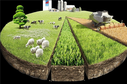 Использование земельных участков для сельскохозяйственной продукции в Чувашии
