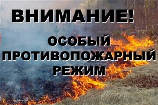 С 25 апреля в Чувашии установлен особый противопожарный режим