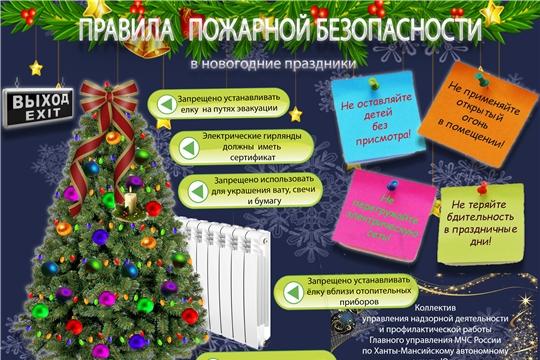 Памятка о мерах пожарной безопасности при проведении мероприятий в период новогодних и рождественских праздников