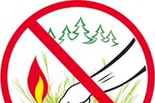 В 2020 году на территории Чебоксарского района произошло 29 возгораний сухой травы