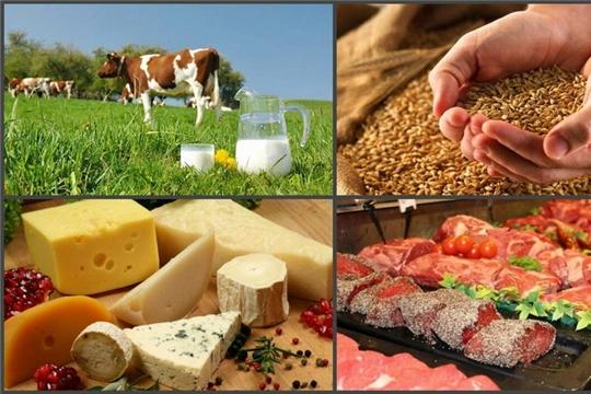 Росреестр Чувашии отмечает рост фермерских хозяйств