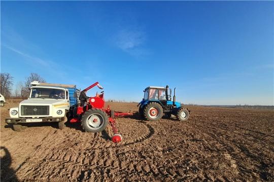 В Чебоксарском районе приступили к севу яровых зерновых культур
