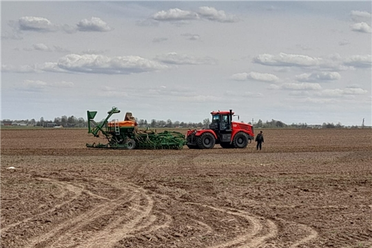 В Чебоксарском районе к севу яровых культур приступило большинство сельскохозяйственных организаций