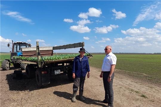 Аграрии Чебоксарского района на этой неделе планируют завершить сев яровых зерновых и зернобобовых культур
