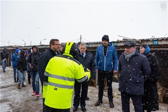 Депутаты Чебоксарского городского Собрания депутатов привезли корм в приют для бездомных животных