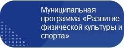 Муниципальная программа «Развитие физической культуры и спорта» на 2014–2020 годы