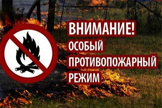 С 25 апреля на территории Чувашии установлен особый противопожарный режим
