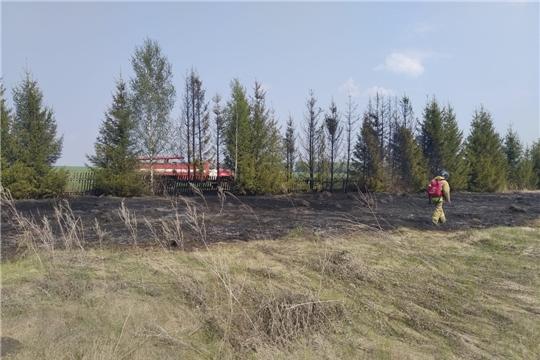 Вчера в республике ликвидировано 8 пожаров
