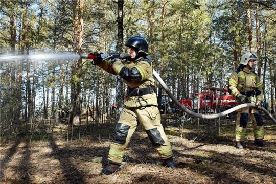 Определены критерии населенных пунктов, поверженных угрозе ландшафтных пожаров