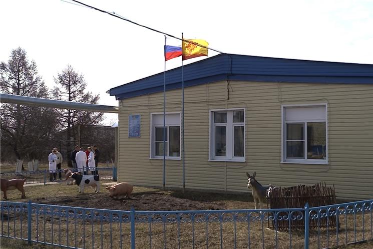 В Чебоксарском районе появится пункт передержки бродячих животных.