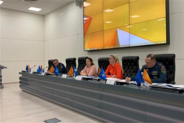 В МЧС России обсудили перспективы развития добровольчества в Российской Федерации