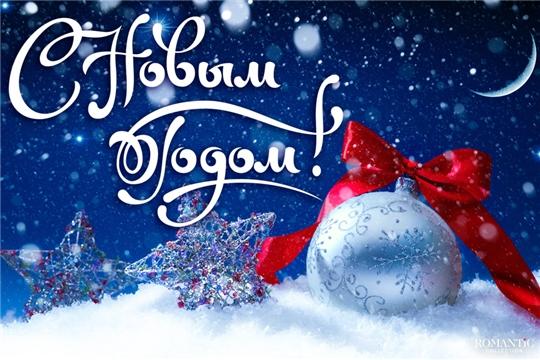 Владимир Димитриев поздравляет жителей Республики с Новым годом и Рождеством!