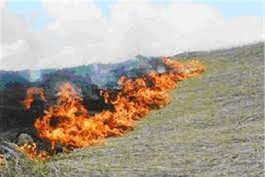 9 из 10 пожаров по вине человека