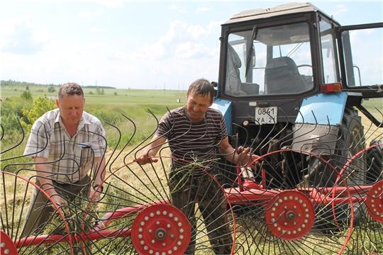 Заготовка сена в Канашском районе