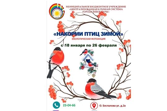 В Чебоксарах стартовал экологический онлайн-фотомарафон «Накорми птиц зимой»