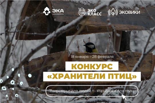 Вторсырье спасет зимующих птиц: стартовал конкурс по изготовлению экокормушек
