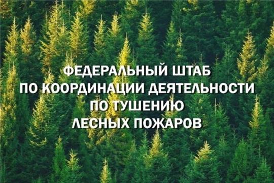 Федштаб Рослесхоза: самовольные выжигания сухой растительности недопустимы