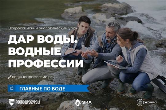 Главные по воде: уроки о «водных» профессиях пройдут в российских школах