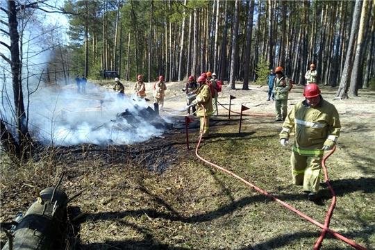 Проведены межведомственные учения по отработке тактики и техники тушения лесных пожаров