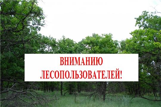 Вниманию лесопользователей!